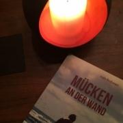 """Das Titelbild von """"Mücken an der Wand"""" von Ruth Frohen ist mit einer Kerze zu sehen."""